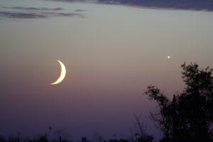kosa luna2